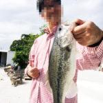 台灣台北市 樹梅坑釣魚趣 ルアーで魚ゲットやで!!!