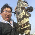台湾グルーパー釣り掘調査。ジャッカルのチャンクローが猛威を振るうin永安百甲休閒漁場