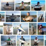 カナダとマダガスカルに行くついでに釣りに行きたい。KOB釣りか?