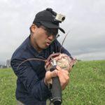 スピンガバチョをベイトロッドで投げ倒してみた。台湾どぶ川クラリアス釣り