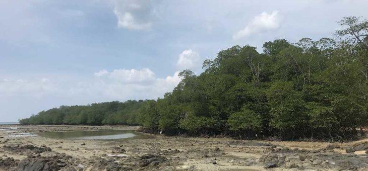 マレーシアボルネオ島でクラリアス釣りボウズ!!