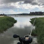 台湾釣りガイド?いや、一緒に釣りに行っただけ。台北近辺で釣り半日プラン