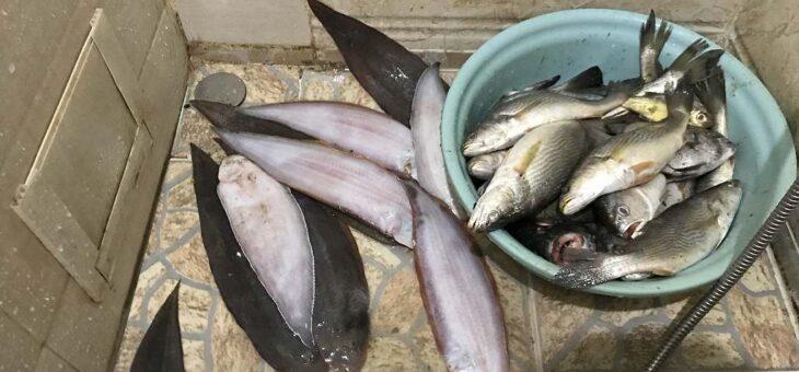 アフリカ(シエラレオネ)でぶっこみ釣り大作戦-第一戦